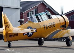 NorthAmerican_AT-6_D-FITE_2010-03-194.jpg