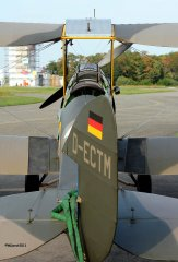 TigerMoth_D-ECTM_2011-08-2518.jpg