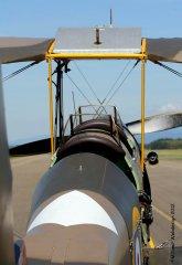 TigerMoth_D-ECTM_2012-08-179.jpg
