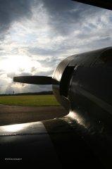 Yak-11_D-FJII__2007-09-26_13.jpg