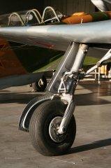 Yak-11_D-FJII__2007-09-26_3.jpg