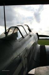 Yak-11_D-FJII__2007-09-26_8.jpg