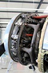 Yak-11_D-FJII__2011-05-101.jpg