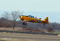 NorthAmerican_AT-6_D-FITE_2010-03-1916.jpg