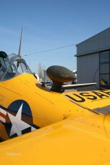 NorthAmerican_AT-6_D-FITE_2010-03-1945.jpg