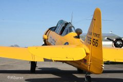 NorthAmerican_AT-6_D-FITE_2010-03-1950.jpg