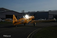 NorthAmerican_AT-6_D-FITE_2010-03-198.jpg