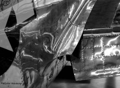 P-51_D-FPSI_2012-08-244sw.jpg