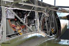 Yak18_2011-11-1815.jpg
