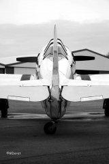 Yak-11_D-FMAX_2010-03-303.jpg