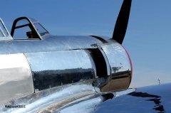 Yak-11_D-FMAX_2011-07-294.jpg