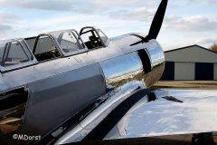 Yak-11_D-FMAX_2013-03-293.jpg