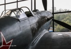 Yak-3_D-FLUG_2016-10-077.jpg